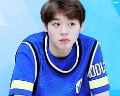Jihoon Jihoon Summer Memories, Produce 101 Season 2, Bias Wrecker, How To Look Better, Kpop, Park, Boys, People, Fandom