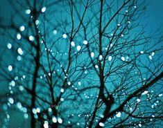 tree lights photo blue baby nursery art photography by MyanSoffia