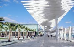 """Muelle 1"" is a new port in Málaga with the new promenade, shops, cafes and restaurants, kids areas and a beautiful palm tree garden."