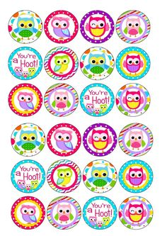24 icing cake toppers decorations birthday Cute colourful owls new basy 1st 2nd