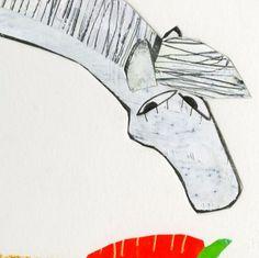 Amerigo eet wortel