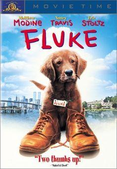 Fluke 1995