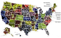 United Grapes of America - Wine Not visit them all?