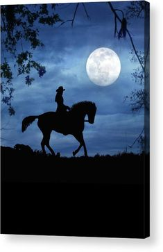 Peaceful Moon Acrylic Print by Stephanie Laird. All acrylic prints are professionally printed, packaged, and shipped within 3 - 4 business days and delivered ready-to-hang on your wall. Choose from multiple sizes and mounting options. Cute Horses, Pretty Horses, Horse Love, Beautiful Horses, Animals Beautiful, Silhouette Painting, Horse Silhouette, Cavalo Wallpaper, Horse Wallpaper