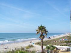 Find the perfect Surfside Beach vacation rental or Garden City Beach rental with Surfside Realty. Enjoy a beautiful vacation in Surfside Beach today with our amazing rentals. Garden City Beach Sc, Beach Gardens, Surfside Beach, Murrells Inlet, Pawleys Island, I Love The Beach, Beach Vacation Rentals, Myrtle, South Carolina