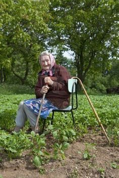 old peasant woman with a cane working in potato field  I can only hope to be able to garden this long in life.  Look at her sweet smile.. God love her!