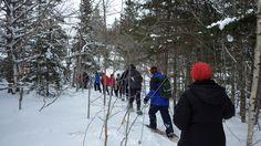 Nova Scotia Hiking, Walking and Snowshoeing - Hike Nova Scotia