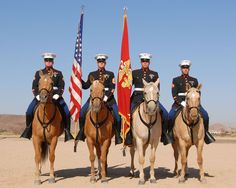 USMC Mounted Color Guard riding wild palomino mustangs adopted from the BLM's Adopt a Wild Horse and Burro Program. Several of these horses were trained by the prisoners in Carson City, Nevada. Once A Marine, My Marine, Us Marine Corps, Palomino, Horsemen Of The Apocalypse, Color Guard, Wild Horses, Beautiful Horses, Pretty Horses