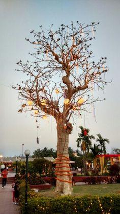 Colour ful tree