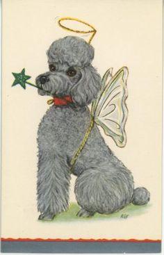 VINTAGE GRAY FRENCH POODLE ANGEL STAR HALO CHRISTMAS VINTAGE CARD ART PRINT
