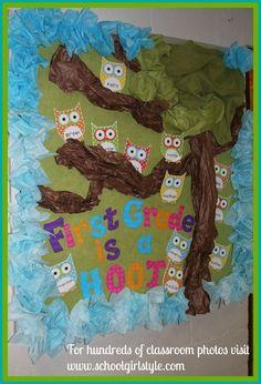 Owl classroom theme and bulletin board decor from Schoolgirl Style