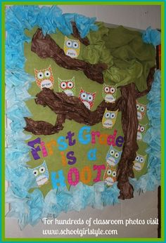 Owl classroom theme and bulletin board decor from Schoolgirl Style