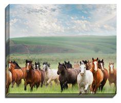 Wild Horses byGeorgianna Lane Photographic Print on Canvas