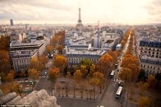 Camera trickery: A view of Paris with the Eiffel Tower in the background taken on a cloudy day in autumn