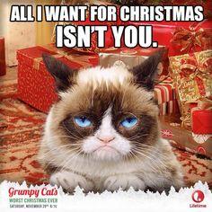 Grumpy Cat Christmas Wish