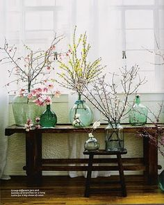 old glass bottles filled w. flowering branches