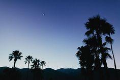 Ace Hotel - Palm Springs - Poppytalk