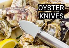 Discover the best Oyster knives with blunt beveled blades to make shucking oysters easier at your next dinner party. Best Oysters, Shucking Oysters, Home Recipes, Food Preparation, Quick Meals, Kitchen Gadgets, Cool Kitchens, Knives, Pork