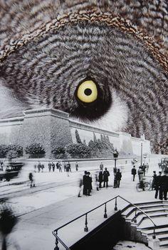 Eye in the Sky, http://society6.com/turckart