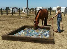 23 ideas for horse training and obstacle course – meowlogy 23 Horse Training and Obstacle Course Ideas – meowlogy - Art Of Equitation Horse Training Tips, Horse Tips, Extreme Trail, Course À Obstacles, Horse Arena, Horse Exercises, Horse Games, Equestrian Outfits, Equestrian Style