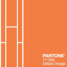 Much like the setting summer sun, PANTONE 17-1360 Celosia Orange is optimistic and spontaneous. #FCRS14 #pantone