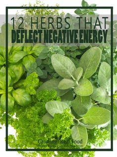 12 herbs that deflect negative energy: Basil, White Sage, Fennel, Rosemary, Eucalyptus, Frankincense, Oregano, Clove, Lavender, Ylang Ylang, Vetiver, Sandalwood.