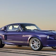 Cl Mustang >> 1378 Best Mustangs Images On Pinterest In 2019 Collector Cars