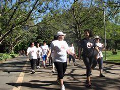 A Sociedade Brasileira para o Estudo da Dor (SBED) realizará, às quintas e sábados do mês de dezembro até o dia 21, as Caminhadas Pare a Dor, no Parque Ibirapuera.