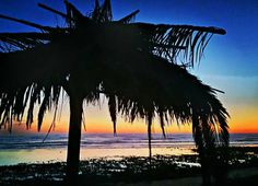 San Onofre State Beach Lobster Bake, Purple Mountain Majesty, Get Outdoors, Chicano, Surfing, National Parks, To Go, Waves, San