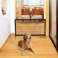 PETSJOY Indoor Safety Gate Baby Gate Folding Adjustable Wooden Pet Gate Dog Slide Gate Free Standing Step Over Gate Baby Pet Fence for Corridor, Doorway, Stairs, Extra Wide, Cherry ** Check out the image by visiting the link. (This is an affiliate link)