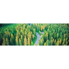 Fall aerial road forest Kuopio Finland Canvas Art - Panoramic Images x Canvas Wall Art, Wall Art Prints, Poster Prints, Finland Flag, Panoramic Images, Typography Art, Wall Art Decor, Tapestry