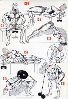 Exercice Cou