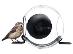 Order this lovely Bird Feeder feeding station produced by the traditional manufacturer Born in Sweden, available here in the interior shop. Plastique Recyclable, Sweden, Modern Bird Feeders, Modern Birdhouses, At Close Range, Recycling, Window Ledge, Buy Birds, Small Birds