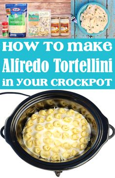 Easy Crockpot Dinners: Tortellini with Alfredo Sauce! Craving comfort food tonight? With just 4 ingredients and 5 minutes of prep, you'll be rewarded with delicious layers and layers of cheesy pasta... minus the effort! Go grab the recipe and give it a try this week! Crock Pot Food, Crock Pots, Crockpot Dishes, Crockpot Meals, Slow Cooker Recipes, Delicious Crockpot Recipes, Yummy Pasta Recipes, Dinner Recipes, College Recipes