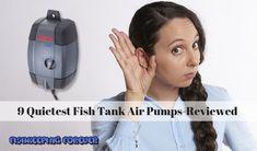Tropical Freshwater Aquarium with Discus Fish | Fresh ...