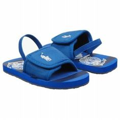 POLO BY RALPH LAUREN Kids' Wayler Slide Tod (Bright Blue/Navy 7.0 M) Polo Ralph Lauren. $22.00