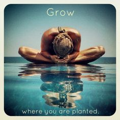 Grow where you are planted. Yoga Photography - Lotus Pose in Water