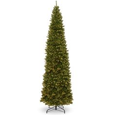 National Tree NRV7-358-120 12' North Valley Spruce Pencil Slim Tree with Clear Lights
