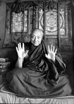 """"""" A mente cria tanto samsara e nirvana No entanto, não há nada de mais nisso - . São apenas pensamentos Uma vez que reconhecemos que os pensamentos são vazios , a mente já não têm o poder de nos enganar Mas, enquanto nós levamos nossos pensamentos iludidos como reais , eles continuarão a atormentar-nos sem piedade , como têm vindo a fazer ao longo de incontáveis vidas passadas """" . -Dilgo Khyentse"""