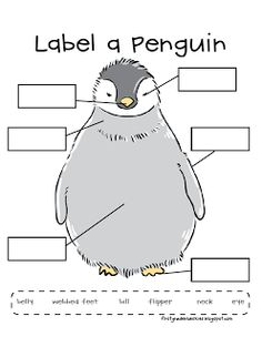 Penguin animals, Penguins and Animal video on PinterestLabel a Penguin ... easy to make our own.... better still get the children to draw their own snowman one day .... then draw boxes or lines on for them to ...