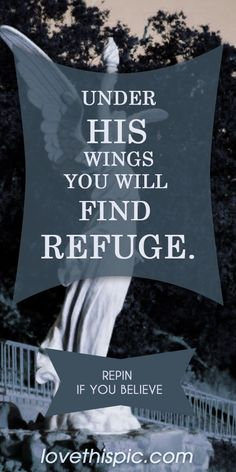 Psalm 91.4 He shall cover you with His feathers, and under His wings you shall take refuge; His truth shall be your shield and buckler.