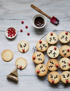 Christmas Reindeer Cookies - The first box of our gourmet Advent calendar unveils these Christmas reindeer biscuits: tasty vanil - Christmas Cooking, Christmas Desserts, Christmas Treats, Christmas Time, Christmas Decorations, Christmas Lights, Christmas Chocolate, Christmas Cookies Kids, Xmas Holidays