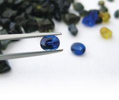 Capricorn Sapphire