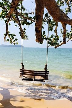 Serenity - swinging on the beach . The Places Youll Go, Places To Go, I Love The Beach, Peaceful Places, Belle Photo, Dream Vacations, Beautiful Beaches, Seaside, The Good Place