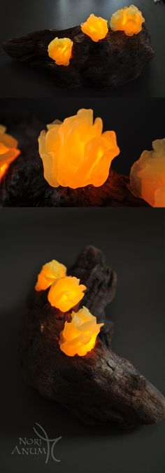 Handmade Orange mushroom lamp #driftwood #home-decor #handmade #mushrooms #lamp #nightlight #art