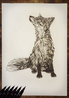 "Greg Coulton,  ""Rebecca the Fox"" Drawing, illustration"