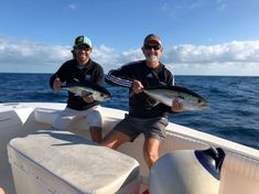 Tuna Fishing, Offshore Fishing, Shark, Articles, Community, Sharks