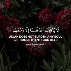 """Allah does not burden any soul with more than it can bear."" - [Surah Al-Baqarah - Ayah 286]"