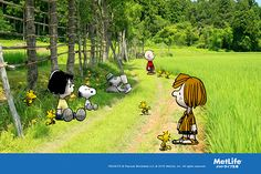 Metlife Snoopy, Snoopy Family, Animated Cartoon Characters, Peanuts Characters, Snoopy And Woodstock, Peanuts Snoopy, A Comics, Charlie Brown, Summer Fun