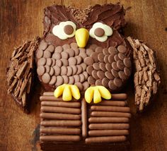 Chocolate owl cake.
